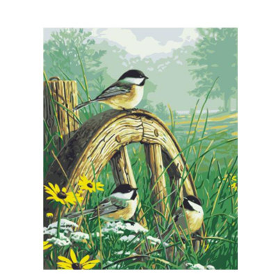 Paint by number kit with birds, DTPI1151