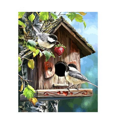 Paint by number kit with birds, DTPI1297