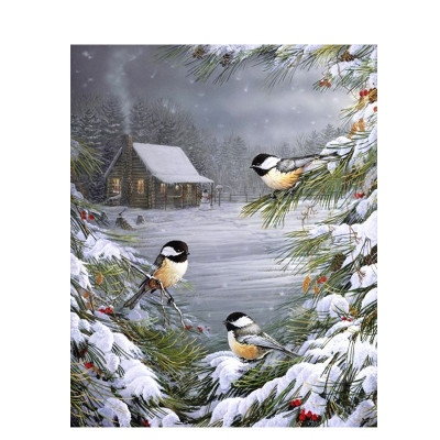 Paint by number kit with winter, DTPI972