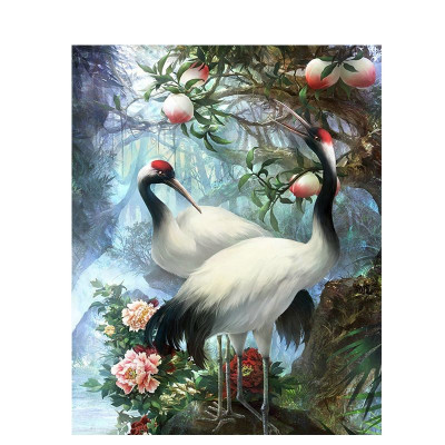 Paint by number kit with birds, DTPI1009