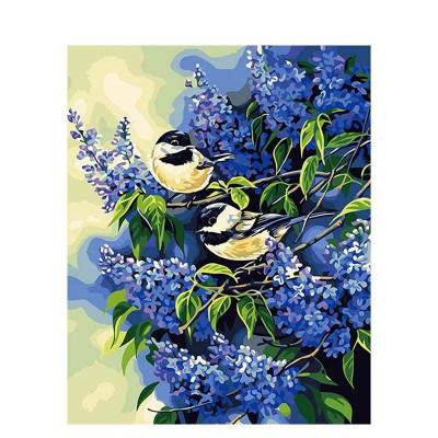 Paint by number kit with birds, DTPI673