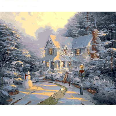 Paint by number kit with winter, DTPI838