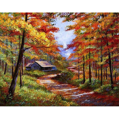 Paint by number kit with scenery, DTPI566