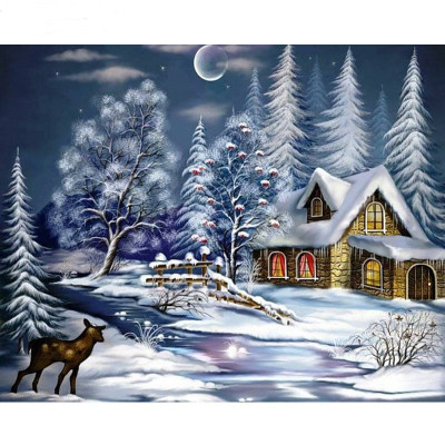 Paint by number kit with winter, DTPI829